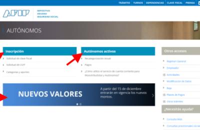 trabajador autónomo en argentina